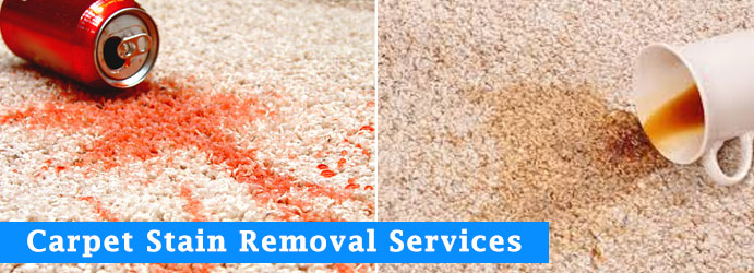 Carpet Stain Removal Services Gomersal