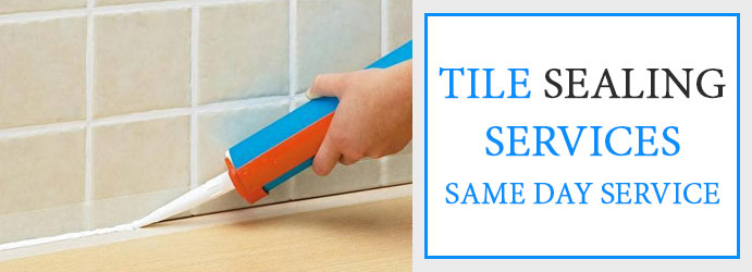 Tile Sealing Services Lower Hermitage