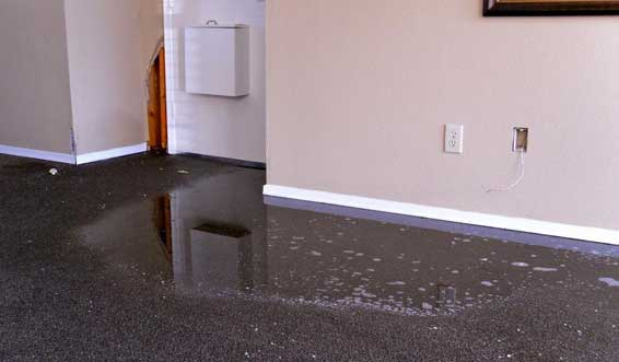 Flood Damage Restoration Adelaide